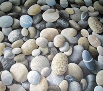 Pebble Beach (close-up)